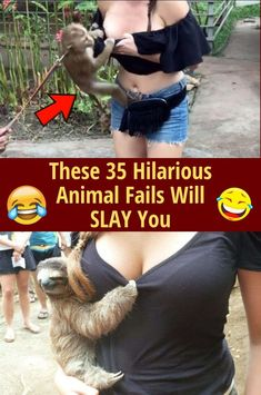These 30 Hilarious Animal Fails Funny Animal Comics, Funny Animals, Embarrassing Moments, Funny Moments, Girls Best Friend, Best Friends, Animal Fails, Funny Pictures Can't Stop Laughing, Picture Fails