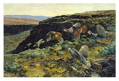 """Is there an avid bird hunter in your life? Give them the thrill of the chase time and time again with a print of Fred Boyce's original painting  """"Swift Fly Away"""""""