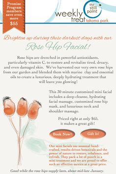 Rose Hip Facial only through January and only $65