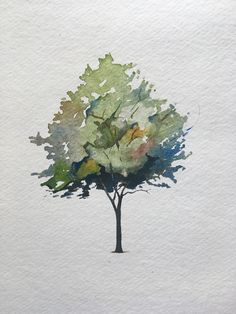 How To Paint A Tree In Watercolors - The Startup - Medium Tree Watercolor Painting, Watercolor Painting Techniques, Painting & Drawing, Simple Watercolor, Tattoo Watercolor, Watercolor Animals, Watercolor Background, Watercolor Flowers, Painting Trees