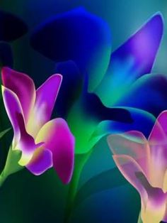 Blue And Purple Roses | Glowing Purple and Blue Flowers Wallpaper | iPhone | Blackberry