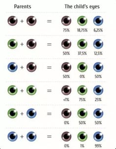 The Perfect Guide To What Your Children Will Look Like - Ridiculously The More You Know, Good To Know, Eye Color Chart, Future Mom, Wtf Fun Facts, Useful Life Hacks, Things To Know, Writing Tips, Mind Blown