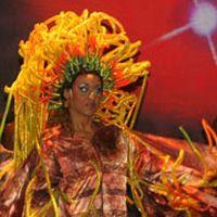 Show Forças da Natureza - moradores do Rio pagam meia -  Postado na data de 05.01.09