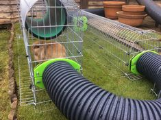 All sorts of rabbit housing idea for you to view. Great ideas, lots of fun and ways to make your bunnies& housing an attractive feature in the garden& as well as a fantastic environment for. Bunny Sheds, Rabbit Shed, Rabbit Hutch Plans, Outdoor Rabbit Hutch, Rabbit Run, House Rabbit, Rabbit Hutches, Bunny Cages, Rabbit Cages