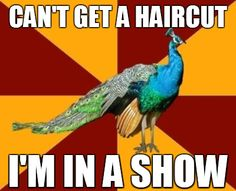Theatre Kid Problems - Right now. I wanna cut my hair so badly, but I don't know what my director would like for my character's hairdo so I'll just wait.
