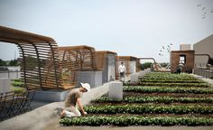 Using roof space for food space. for more pins see the urban imagined https://pinterest.com/urbanimagined/