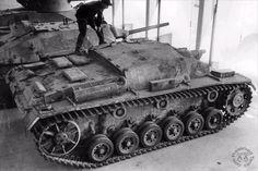 Sturmgeschütz III Ausf. D (Sd.Kfz. 142) | by Panzer DB