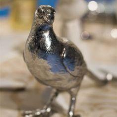 Tafel Toe - Episode 3 Episode 3, Blue Jay, Bird, Animals, Animales, Animaux, Birds, Animal Memes, Animal