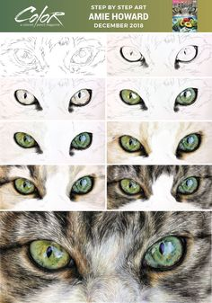 Ann Kullberg's popular COLOR magazine offers practical, step-by-step instruction. - Ann Kullberg's popular COLOR magazine offers practical, step-by-step instruction month after mont - Pencil Drawing Tutorials, Pencil Art Drawings, Animal Drawings, Art Tutorials, Horse Drawings, Watercolor Pencil Art, Watercolor Eyes, Realistic Eye Drawing, Cat Drawing