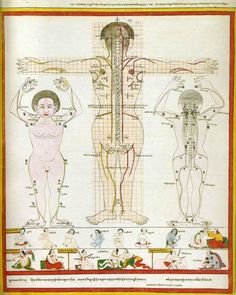 Kate Roddick's personal introduction to the Tibetan system of Ayurveda.  The Tibetan doctor took the sample of her urine and bustled into his courtyard to test it. He returned, without a word, looked at her kindly, and rather deeply, and seemed to scan her body visually. He then took her pulse for some time. What arose was astonishing.  #TibetanMedicine #healing‬ ‪‪#‎Ayurveda‬ ‪#‎levekunst‬ ‪#‎artoflife‬ ‪#KateRoddick