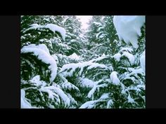 Vánoce, Vánoce přicházejí (Veselé Vánoce) text - YouTube Good To Know, Snow, European Countries, Czech Republic, Outdoor, Youtube, Music, Christmas, Outdoors