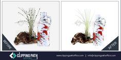#Complex #Background #remove services Remove White Background, Background Remover, Clipping Path Service, Paths, Photoshop