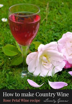 How to make your own homemade wine - includes this recipe for sweet Rose Petal wine #wine