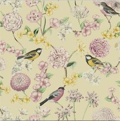A soft floral pattern on a warm yellow background featuring small weaver birds. 🐦 🌸 🌼 🐦 #floralwallpaper #wallpapers #featurewall Nature Wallpaper, Wallpaper S, Yellow Background, Enchanted, Cool Designs, Palm, Birds, Floral, Pattern