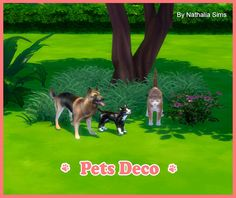 Pets Deco at Nathalia Sims • Sims 4 Updates