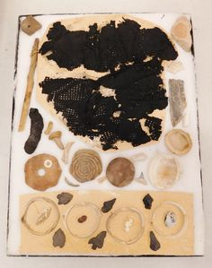"""440: Hohokam Collection, pre-historic items. Made of stone, shell, cotton cloth and bone, the items range from 1/2"""" to 9 1/2"""". Hohokam, Arizona. Small shell snake, arrowheads, shell, fine cotton cloth remnants. Cave find near Tucson, Arizona on private land in the 1950s. Condition: As found, see images. Shipping: $24.50 w/insurance and signature. Tucson Arizona, See Images, Cave, 1950s, Shell, Stone, Summer, Cotton, Batu"""