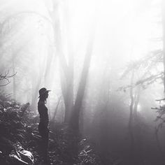 Awakening the senses || Incredibly captured by @genevalehnert #lensdistortions