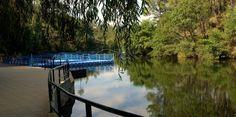 Conheça as praias fluviais de Proença-a-Nova | SAPO Viagens