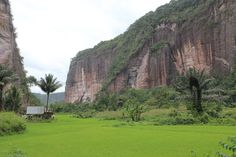 Wonderful Indonesia - The HARAU VALLEY: Green Ricefields and Waterfalls tumbling down Steep Cliffs