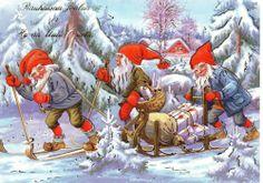 Christmas Greeting Postcard of Gnomes