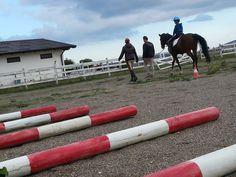 @Riding Star foto di Vito Tammone