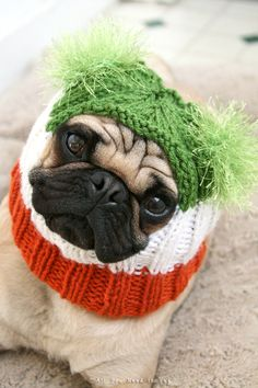 Dog Hat  Irish Pride Hat by AllYouNeedIsPugShop on Etsy, $26.00 #pug #pugs #allyouneedispug #dogs #pets #petfashion #doghat