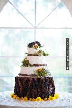 succulent wedding cake | CHECK OUT MORE IDEAS AT WEDDINGPINS.NET | #weddingcakes