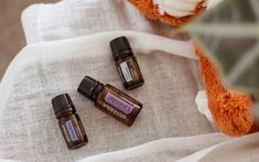 5 homemade beard oil recipes for a smooth, thick, tame beard! Made with simple ingredients to soothe irritation, prevent dry skin + promote new growth. Turkish Apple Tea, Homemade Beard Oil, Millet Bread, Argan Oil Hair Mask, Lemon Soup, Essential Oils For Stress, Diy Hair Mask, Chili Oil, Summer Rolls