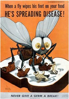 Vintage public health ad warning against food contamination from flies.