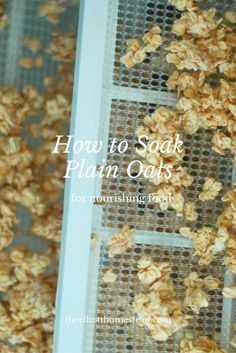 Learn how to soak plain oats. This helps make oats a more digestible and nourishing food choice. Muffins, Nourishing Traditions, That Way, Whole Food Recipes, Healthy Recipes, Food Print, Natural Remedies, Meal Planning, Eating Healthy