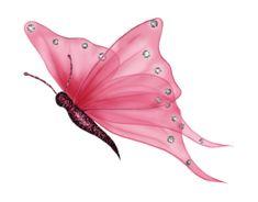 Mi Galeria de Marcos para fotos, ¡¡Gratis!!: Mariposas png