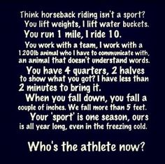 Horse riding motivation and inspiration! Love this so true. - Horses Funny - Funny Horse Meme - - Horse riding motivation and inspiration! Love this so true. The post Horse riding motivation and inspiration! Love this so true. appeared first on Gag Dad. Funny Horse Memes, Funny Horses, Horse Humor, Horse Puns, Funny Animals, My Horse, Horse Love, King Horse, Crazy Horse