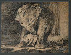 "Storyboard by Bill Peet for Disney's ""Dumbo""."