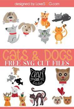 Cricut Craft Room, Cricut Tutorials, Cricut Creations, Svg Files For Cricut, Crazy Cats, Animals And Pets, Free, Cricut Explore, Silhouette Studio