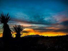 Las Vegas Sunset <3
