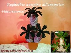 Pianta grassa all'uncinetto Euphorbia Unispina Video/tutorial Crochet succulent plant (English sub.) - YouTube