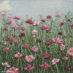 I ❤ embroidery . . . Cosmos ~By Jo-Butcher. Jo recently won the 'Best Craftsperson' category in the Country Living Kitchen Table Talent Awards.