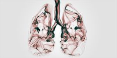 Does long-term marijuana smoking damage your lungs? Research on the subject points to some surprisingly good news.
