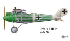 pfalz_diiia72s.jpg 800×481 pixels