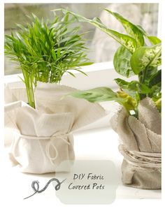 DIY fabric covered potted plants