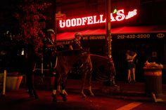 Breaking Night | The New York Times [Photo] | VSCO Journal