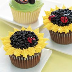 Sunflower: Using a small star tip and yellow frosting, pipe flower petals around the edge of the cupcake. Pipe chocolate frosting in center; cover with mini chocolate chips. For the ladybug, pipe chocolate frosting on a red M&M for decoration.