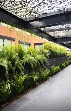 Galeria - Paisagismo no Campus Corporativo Coyoacán / DLC Arquitectos + Colonnier y Asociados - 10