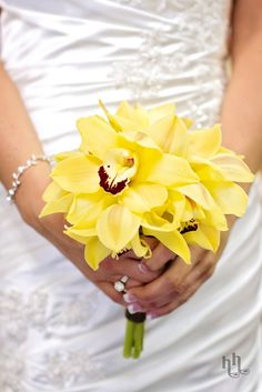 Small bouquet of yellow cymbidium orchids.  Photo from H Photography - http://www.hartandhillphotos.com/.  Bouquet designed by An Affair To Remember