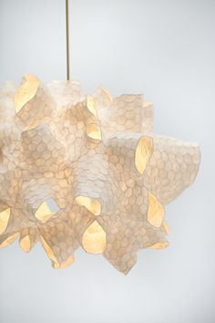Natural Forms, Galvanized Steel, Abstract Sculpture, Polished Brass, Honeycomb, It Works, Sculptures, Ceiling Lights, Contemporary