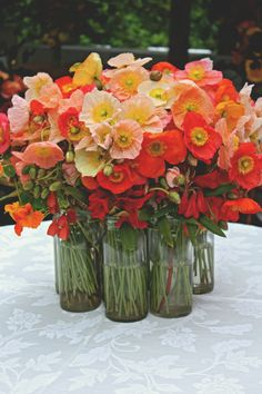 What a great idea - cluster vases of wild poppies would look amazing for a rustic wedding or al fresco dinner party