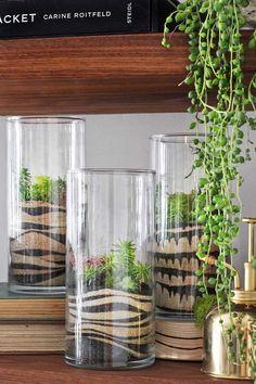 Modern sand art terrarium with succulents Indoor Garden, Indoor Plants, Outdoor Gardens, Home And Garden, Herb Garden, Terrarium Diy, How To Make Sand, Terraria, Diy Planters