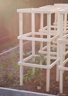 Growing Tomatoes Tomato cages - You can't grow healthy tomato without a tomato trellis or cages. Read this if you need plans and ideas to build a DIY trellis/cages in your garden. Tomato Cage Diy, Tomato Trellis, Diy Trellis, Tomato Cages, Trellis Design, Garden Trellis, Balcony Garden, Tomato Tomato, Tomato Gravy