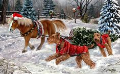 "New for 2014! Airedale Christmas Holiday Cards are 8 1/2"" x 5 1/2"" and come in packages of 12 cards. One design per package. All designs include envelopes, your personal message, and choice of greeting. Select the inside greeting of your choice from the menu below.Add your custom personal message to the Comments box during checkout."