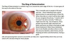 1000 images about and iridology on
